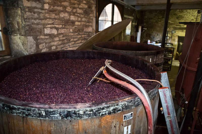 Domaine eric de suremain viticulteur monthelie en bourgogne for Par la fenetre ouverte bonjour le jour
